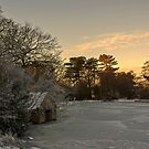 Frozen pond by hary60