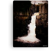 The Waterfall in November  Canvas Print