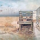 Happy Holidays and Sandy Toes by Susan Werby