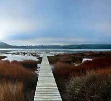 Aramoana Dawn by ColinGaleImages