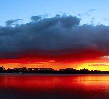 Sunset in Lake Rotorua, Hamilton, North Island-New Zealand by yolan