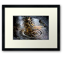 Rain Puddle in Autumn Framed Print