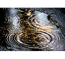 Rain Puddle in Autumn Photographic Print