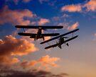 Hawker Nimrod Bi-planes by Nigel Bangert