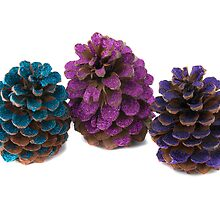 three pineapples by OHphoty