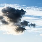Teddy bear cloud by Olivier Sohn