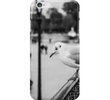 Perched seagull looking down at people in Jardin des Tuileries, Paris iPhone Case/Skin