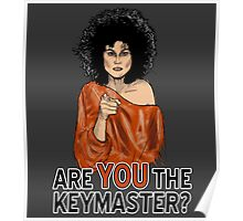 Are You the Keymaster? Poster