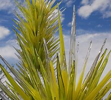 Chihuly Cactus by rrushton