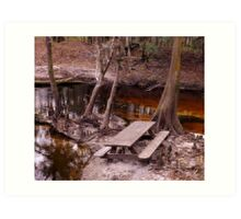 Picnic in the Creek Artistic Photograph by Shannon Sears Art Print
