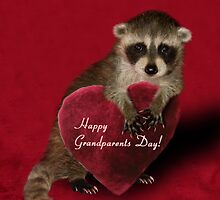 Grandparents Day Raccoon by jkartlife