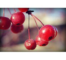 Cherry Photographic Print