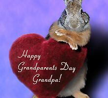 Grandparents Day Grandpa Bunny by jkartlife