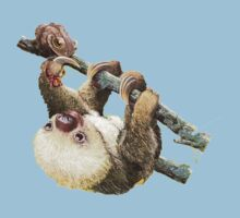Baby Sloth Kids Clothes