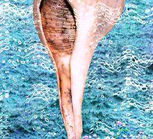 La Concha & the Ocean by Jorge S Jimenez