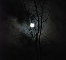 A Scary Night  by Vonnie Murfin
