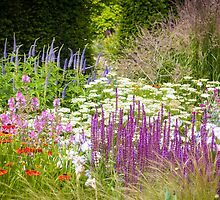 Bluebell Cottage Gardens - Summer Border by Joe Wainwright