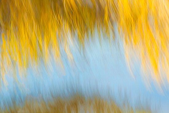 Autumn's Final Curtain by Marilyn Cornwell