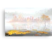 Float Fall Canvas Print