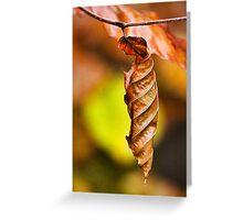 Beech Leaf Greeting Card