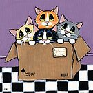 Mail Order Kittens by Lisa Marie Robinson