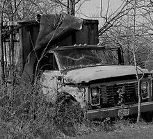 Old GMC Farm Truck by Hope Ledebur
