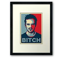 Pinkman, Bitch! Framed Print