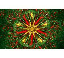 Tiled Christmas Star Photographic Print