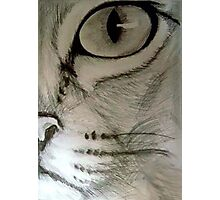 Cats Eye Photographic Print