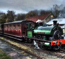 Tanfield Railway: Sir Cecil A Cochrane by Andrew Pounder