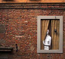 Donna alla finestra, Siena, Italy by buttonpresser