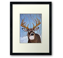 Winter Buck Framed Print