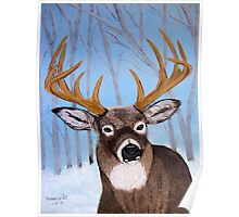 Winter Buck Poster