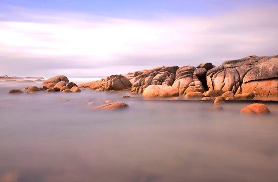 Nelson Bay Tasmania by Imi Koetz