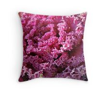 Decorative Fancy Pink Kale Throw Pillow