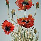 'Poppies' by fi-ceramics