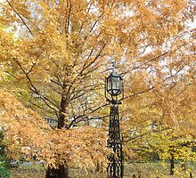 Autumn Colors, City Hall Park, Lower Manhattan, New York City by lenspiro