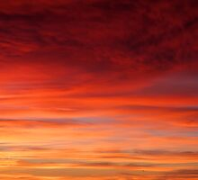 Red Sky In The Morning by Fern Blacker