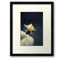 (S)He Loves Me (Not) Framed Print