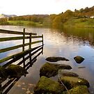 Loughrigg Tarn and The Langdales by Mike  Waldron