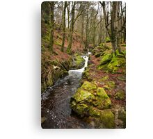 The Wicklow Mountains - Ireland Canvas Print
