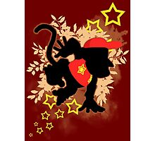 Super Smash Bros. Diddy Silhouette Photographic Print