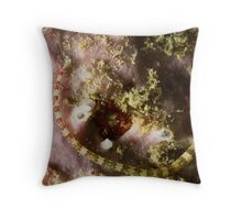Pipefish Circular Throw Pillow