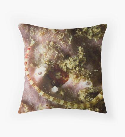 Pipefish Circular Throw Pillow