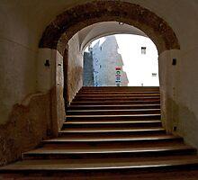 Salzburg Steps by phil decocco