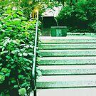 Park In Montreal 8323 by korokstudios