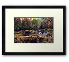 Chattooga River Fall Colors Framed Print