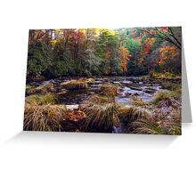 Chattooga River Fall Colors Greeting Card