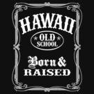Hawaii Old School by robotface