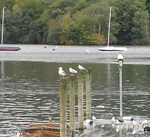 UK - Windermere by soulimages